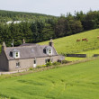Stock Photo: Rural Scottish cottage