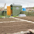 Allotment garden — Stock Photo