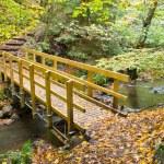 Bridge in autumnal forest — Stock Photo