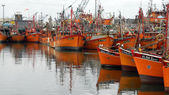 Fishing boats at Port of Mar del Plata — Stock Photo