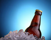 Beer in ice — Stock Photo