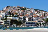 Skopelos greek island landscape — Stock Photo