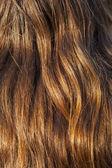 Hair Girl Background — Stock Photo