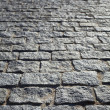 Paving Stone — Stock Photo #19780913
