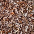 Tree Bark Mulch — Stock Photo
