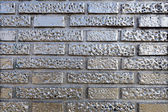 Silvered Brick Wall — Stock Photo