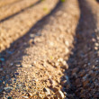 Furrow Closeup — Stock Photo