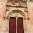 Monumental Door in Salamanca — Stock Photo