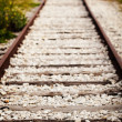 old railroad track — Stock Photo