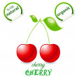 Cherry - Vettoriali Stock