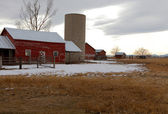 Red Barn in Winter in Colorado — Fotografia Stock