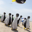 Penguins and Whale at a kite show — Stock Photo