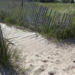 Stock Photo: Beach Path