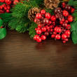 Christmas wreath from red berries, a fur-tree and cones — Stock Photo