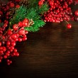 Stock Photo: Christmas wreath from red berries, a fur-tree and cones