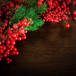Christmas wreath from red berries, a fur-tree and cones — Stock Photo #12848299