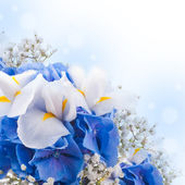 Flowers in a bouquet — Stockfoto