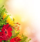Autumn flowers, bouquet from gerber and sunflowers — Stock Photo