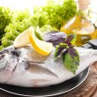 Fresh fish of dorado on a frying pan with a lemon and olive oil — Stock Photo #14722999