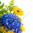 Bouquet from blue hydrangeas and yellow asters, a flower background — Stock Photo #16249915