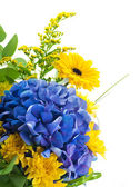 Bouquet from blue hydrangeas and yellow asters, a flower background — Stock Photo