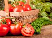 Wattled 购物篮中的绿色洋葱和西红柿 — 图库照片