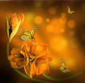 Orchids and Butterflies — Stock Photo