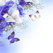 Flowers and butterfly, blue hydrangeas and white irises — Stock Photo