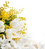 White tulips with a mimosa, a background from flowers — Stock Photo