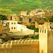 Morocco, a landscape of a city wall in the city of Fes — Stock Photo #23296260