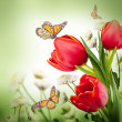Stock Photo: Flowers & butterflies