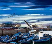 Barcos de pesca azul em uma costa do mar em essaouira, marrocos — Foto Stock