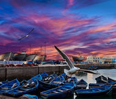 Modré rybářské lodě na pobřeží oceánu v essaouira, maroko — Stock fotografie