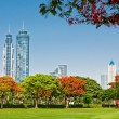 A general view of park in Dubai, UAE — Stock Photo
