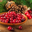 Christmas berries and spruce branch with cones — Стоковая фотография