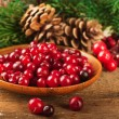 Christmas berries and spruce branch with cones — Stockfoto