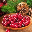 Stock Photo: Christmas berries and spruce branch with cones
