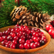 Christmas berries and spruce branch with cones — Stok fotoğraf