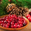 Christmas berries and spruce branch with cones — Stock fotografie