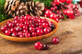 Christmas berries and spruce branch with cones — Stock Photo