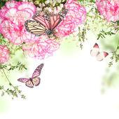 Bouquet di rose rosa e farfalla — Foto Stock