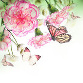 Bouquet of pink roses and butterfly — Stockfoto