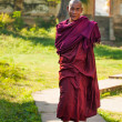 Monk — Stock Photo #38648917
