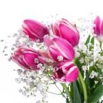 Tulips bloom — Stock Photo #38922481