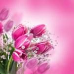 Tulips bloom — Stock Photo #38922495
