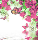 Floral background and butterfly — Foto de Stock