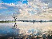 Lonely tree on a lake in Myanmar — Foto de Stock