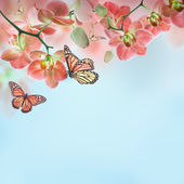 Floral background of tropical orchids and butterfly — Stockfoto