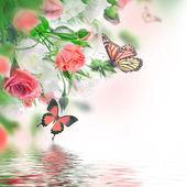 Bukiet róż — Zdjęcie stockowe