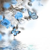 Rosor med fjäril — Stockfoto